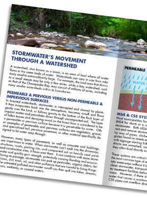 Stormwater Tips